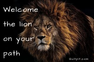 lion story, Welcome the lion on your path, inspiratonal story, Motivational