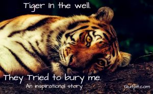 Tiger, Tiger in the well, Inspirational story, motivational story, short story with moral, They tried to bury me.