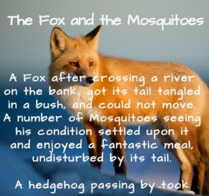 Short story, short stories with moral, shortest stories with moral, short stories for kids, the fox and the mosquitoes